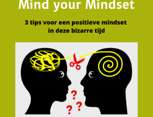 Mind your Mindset
